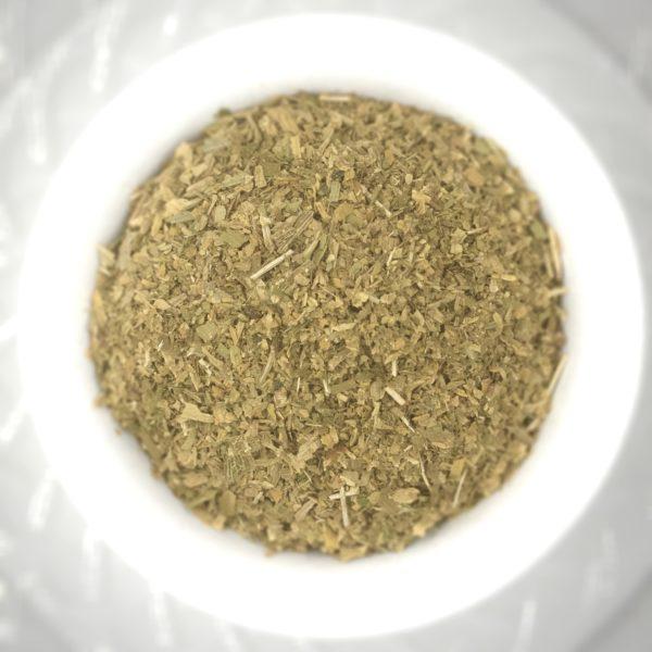 Ginkgo Leaf - Fall Gold - Ginkgo biloba - IMG_2930