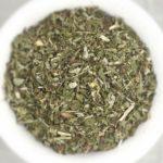Catnip - Nepeta cataria - Loose - IMG_3234