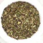 Uva Ursi - Arctostaphylos uva ursi - Loose - IMG_3237